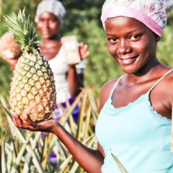 Mahe Kuivatatud Ananass -25g