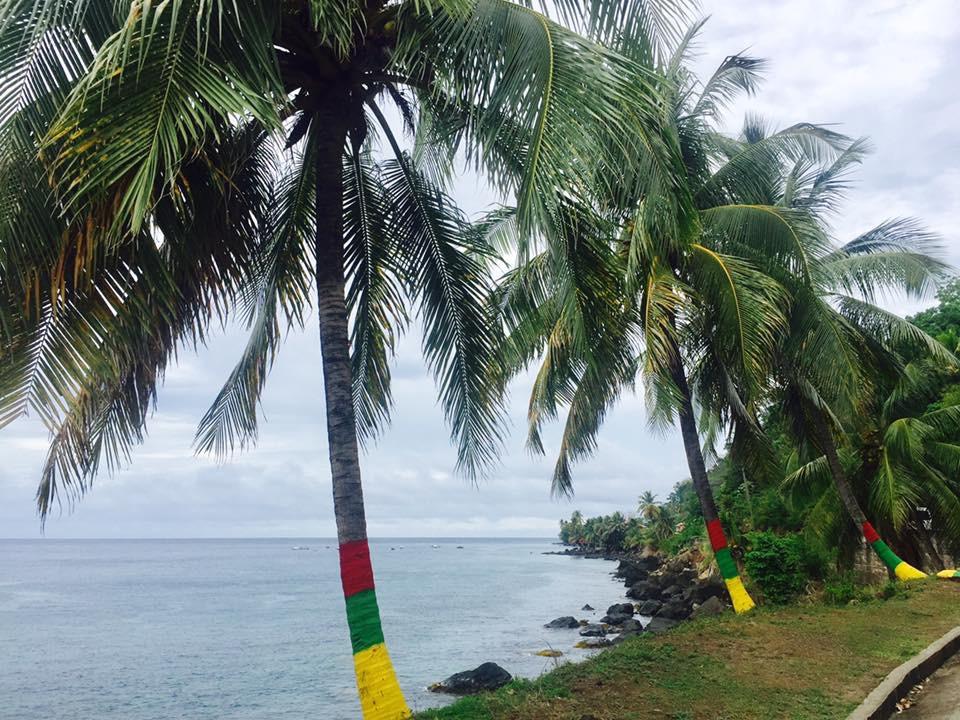 Palmid Grenada rahvusvärvides