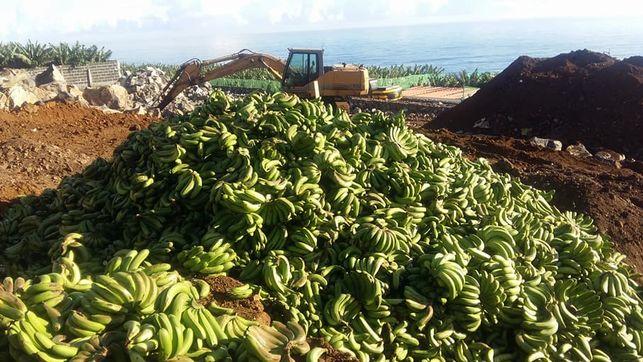 Tonnide viisi banaane prugimaele